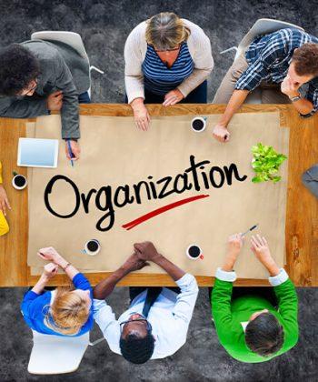 תכנית אופציות לעובדים – תהליכי עבודה יעילים