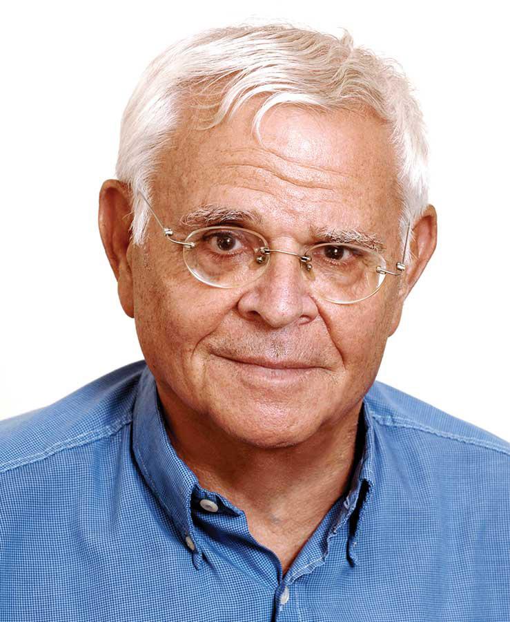 דוד ויסברג